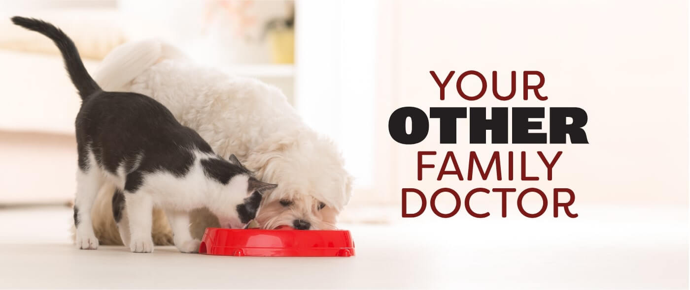 Your Other Family Doctor
